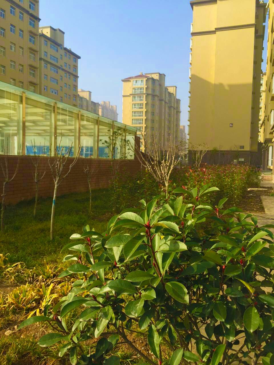 小区景色 - 鹤壁市润泰物业服务有限公司